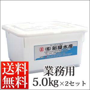 塩太もずく5kg×2セット【送料無料】