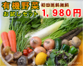 JAS有機 初めての方限定!有機野菜お試しセット【送料無料】