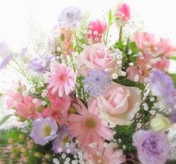 花屋 静岡 花 花や 花束 送料無料 フラワーアレンジメント プレゼント ギフト 鉢花 観葉植物 胡蝶蘭 コチョウラン
