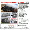 真岡鐵道C11(325号機)/50系客車(赤帯)