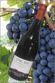 【超地産地消ワイン】     <2本以上で送料無料> カナダ産・赤ワイン ガメイノアール2013年産
