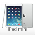 Apple iPad miniケース・オリジナルケースプリント