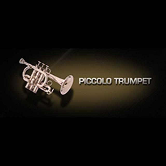 Vienna Symphonic Library/VIENNA PICCOLO TRUMPET【MIRxプレゼントキャンペーン】