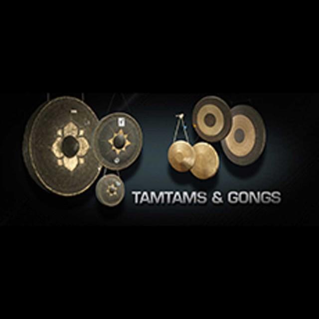 Vienna Symphonic Library/VIENNA TAMTAMS & GONGS【MIRxプレゼントキャンペーン】