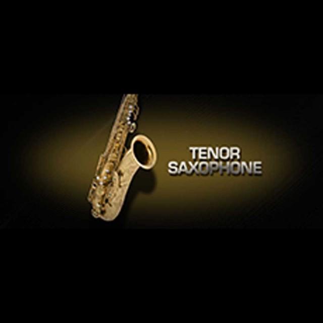 Vienna Symphonic Library/VIENNA TENOR SAXOPHONE【MIRxプレゼントキャンペーン】