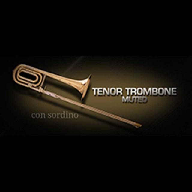 Vienna Symphonic Library/VIENNA TENOR TROMBONE MUTED【MIRxプレゼントキャンペーン】