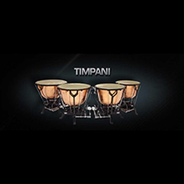 Vienna Symphonic Library/VIENNA TIMPANI【MIRxプレゼントキャンペーン】