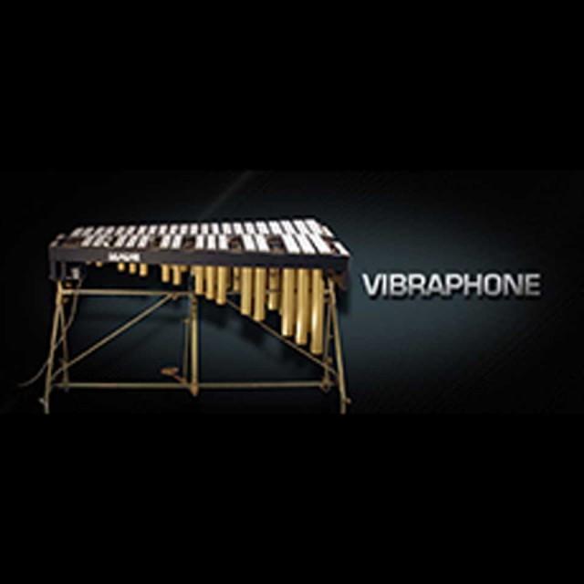 Vienna Symphonic Library/VIENNA 【MIRxプレゼントキャンペーン】
