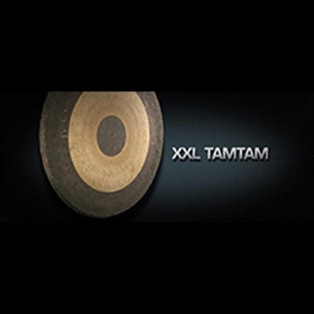 Vienna Symphonic Library/VIENNA XXL TAMTAM【MIRxプレゼントキャンペーン】