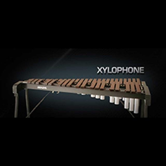 Vienna Symphonic Library/VIENNA XYLOPHONE【MIRxプレゼントキャンペーン】