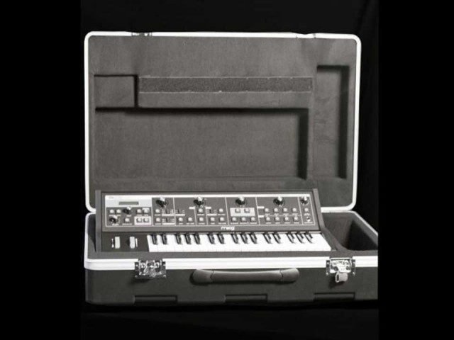 MOOG/LITTLE PHATTY MOLDED ATA CASE