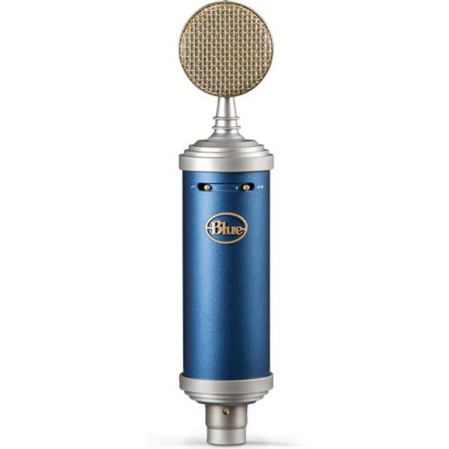 Blue Microphones/Bluebird SL【イントロキャンペーン】