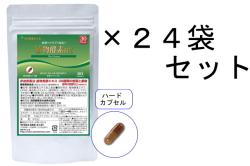 【送料無料】30日分 植物酵素DX/24袋セット