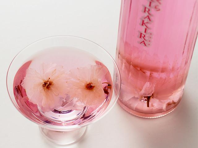 【数量限定】迎春 桜舞う酒 さくらKIRAKIRA