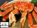 北海道紋別浜茹でたらばがに姿 約1.2kg