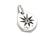 Sun Plate Pendant - Silver w/Clear CZ