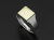 Signet Ring - Square - Silver×K18 Yellow Gold