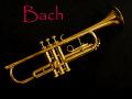 Bach Mercedes トランペット