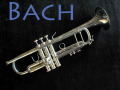 BACH STRADIVARIUS 180ML 37G トランペット Silver