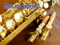 MARCATO SOPHIA SERIES デタッチャブルネック ソプラノサックス