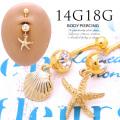 【5月再入荷】[18G14G]夏のおしゃれには欠かせない!大人可愛いシェル&スターフィッシュモチーフ シンプル ヒトデ 貝殻 耳たぶへそピアスボディピアス 0604