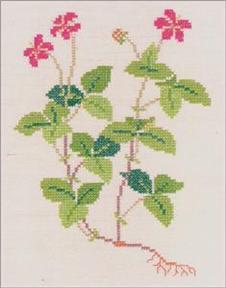 〔Fremme〕 刺繍キット 30-4317F