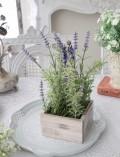 シャビーシックなラベンダーポット(造花) ラベンダーの鉢植え シルクフラワー アーティフィシャルフラワー ラベンダー イ