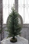 サイプレステーブルツリー・L クリスマスツリー 小型 コンパクト シャビーシック 北欧 フレンチ ロマンティック 可愛い