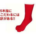 紳士用赤の5本指靴下(綿)