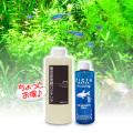 【初心者向け】バクテリア・カルキ抜き/調整剤のおすすめセット (熱帯魚用)