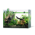 45cm水槽熱帯魚セット