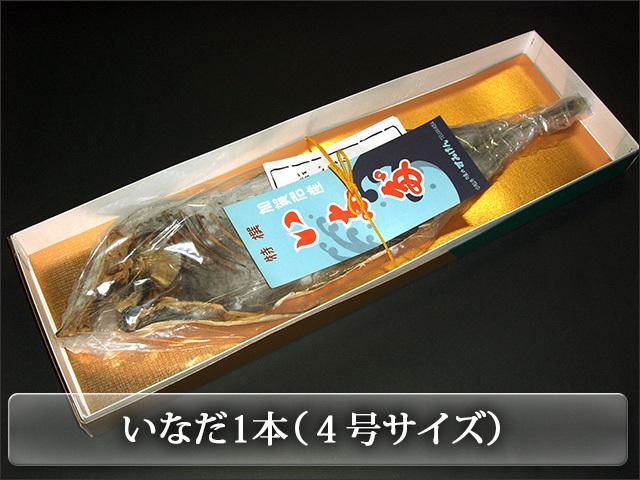 いなだ1本(4号870g前後)