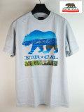 ��NOR CAL�� �Ρ����롡T�����/LAKE BEAR�����졼/M������