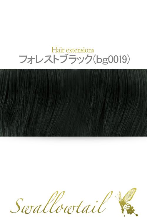 【フォレストブラック】毛束 ex-bg0019
