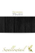 001【ブラック】毛束 ex-1