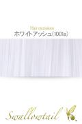 050【ホワイトアッシュ】毛束 ex-1001a
