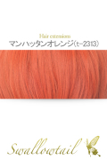 076【マンハッタンオレンジ】毛束 ex-t2313