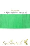 035【エメラルドグリーン】毛束 ex-t2608