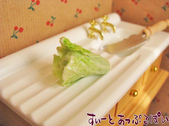 白菜 SMVEG-16