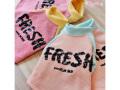 【WOOFLINK★ウーフリンク】Fresh