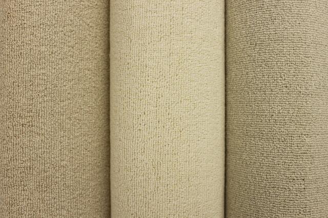 お買い得!コットン カーペット 綿 じゅうたん 絨毯  パウダーコットン100% ループ 【品名 マイコットン】 江戸間 6畳 261×352cm