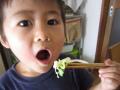 子ども箸 すべらない箸 通販