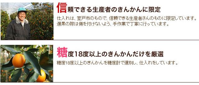 西岡さんの完熟金柑(キンカン)通信販売