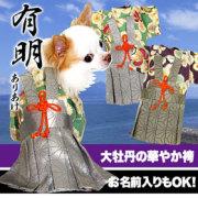 男振り袴(はかま)有明(ありあけ)