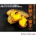 種子島産 安納芋(蜜芋) 4kg