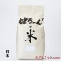 【定期購入・送料無料】健ちゃんちの米 白米 10kg 長野産コシヒカリ