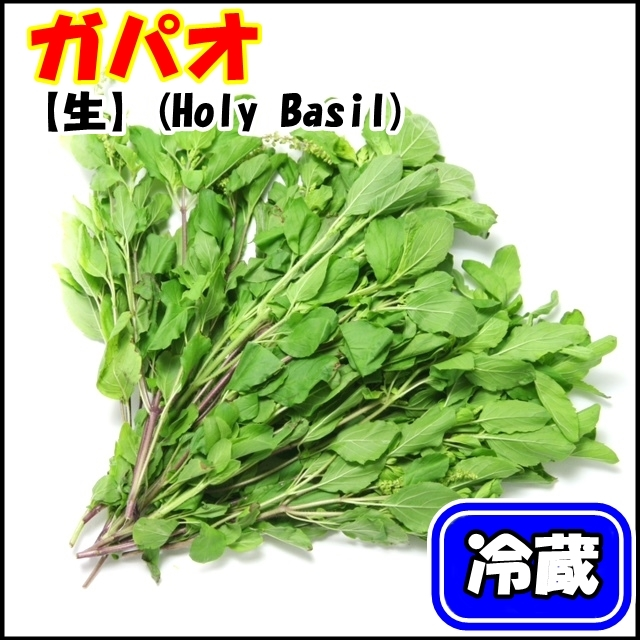 大人気!タイ野菜 ガパオ(ホーリーバジル、Holy basil) 100g 【冷蔵】