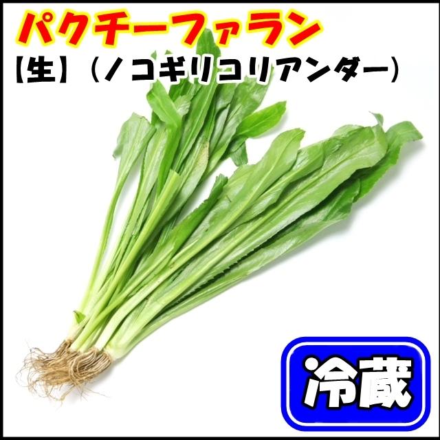大人気!タイ野菜 パクチーファラン(オオバコエンドロ、Stink weed) 50g【冷蔵】