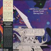 BRAINTICKET/Celestial Ocean(LP) (1973/3rd) (�֥쥤������å�/German,Belgium)