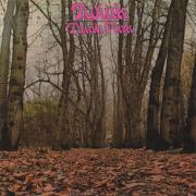 TWINK/Think Pink (1970/1st) (�ȥ�����/UK)